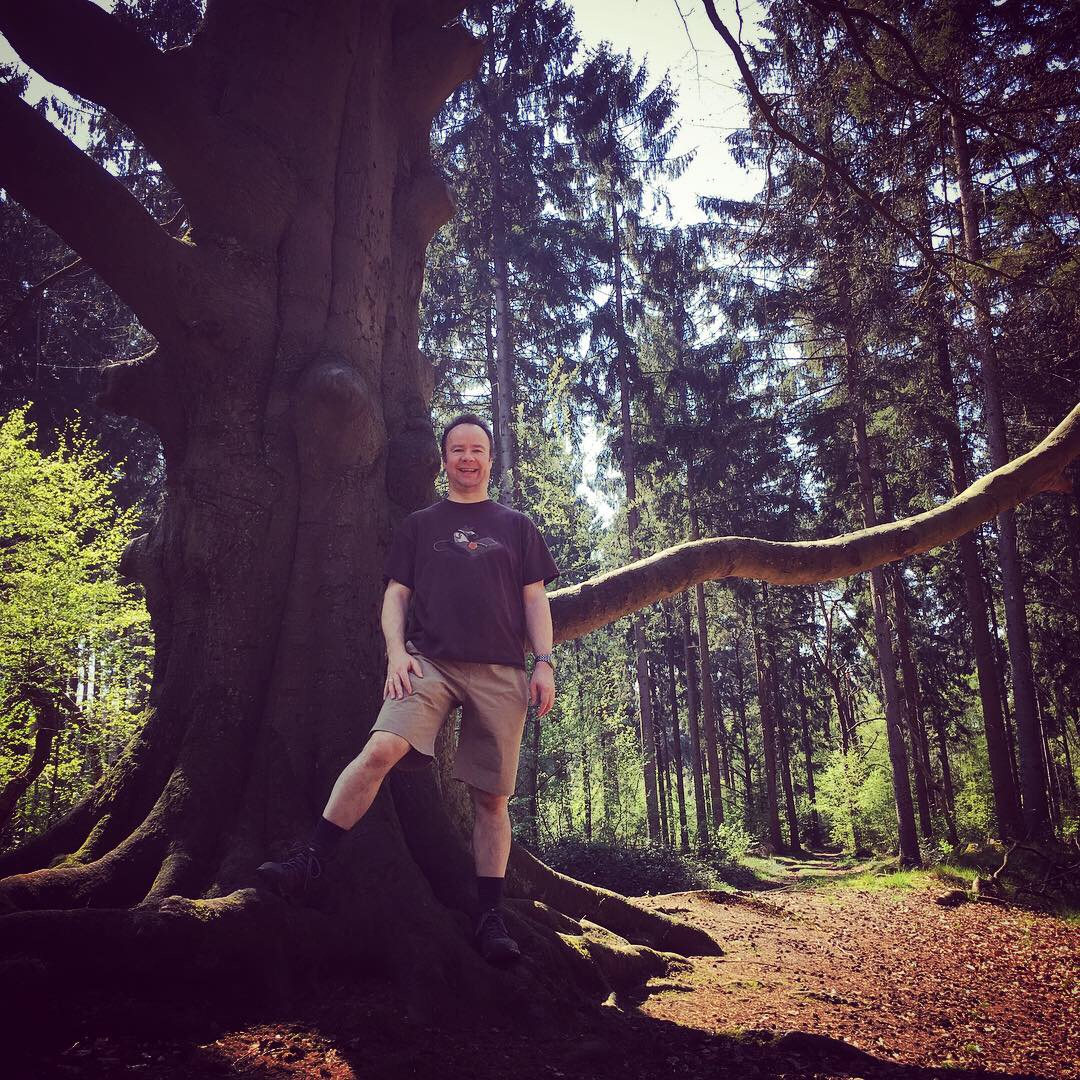 Woodland Walk in Lage Vuursche – Joy of Movement